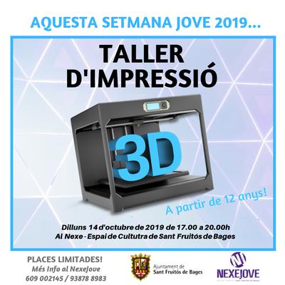 TALLER D'IMPRESSIÓ 3D (1).png