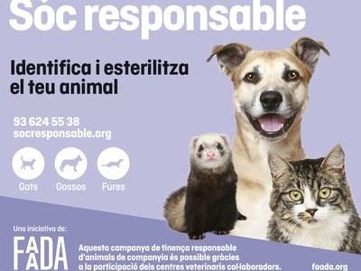 Campanya anual d'identificació i esterilització d'animals domèstics