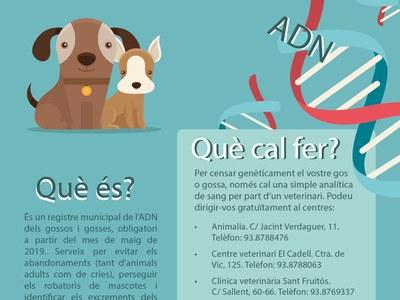 Campanya gratuïta d'identificació canina mitjançant l'ADN
