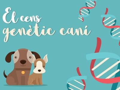 Els propietaris dels gossos que han participat en la campanya d'identificació per ADN, poden recollir la xapa identificativa pel seu animal
