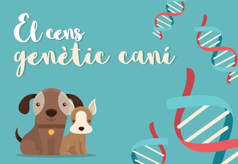 Xapa identificativa ADN gossos