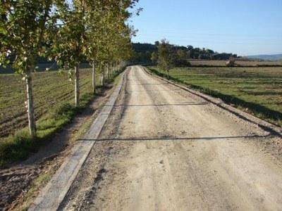 Es plantaran una quarantena de plataners al camí paisatgístic de Sant Fruitós de Bages