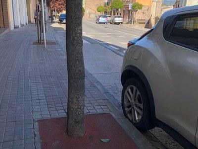 L'Ajuntament cobreix amb paviment de cautxú 23 escocells més d'arbres del municipi