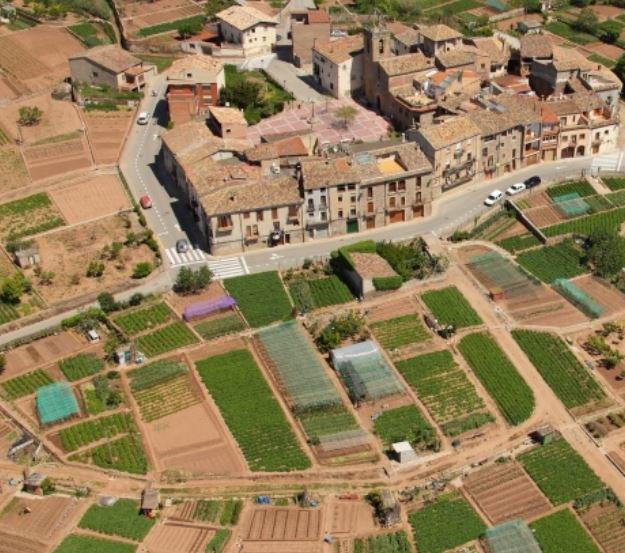 Horts de La Sagrera - imatge d'arxiu