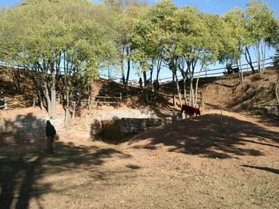 La zona de la Font de la Tolega comptarà amb un nou parc infantil
